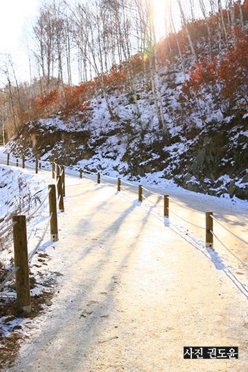 눈 내린 산길에 비추는 햇빛